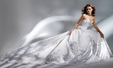 Wedding Dress - Bridal Wear